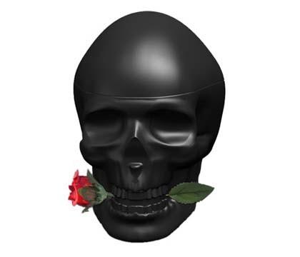 Ed Hardy Skulls And Roses Men By Christian Audigier